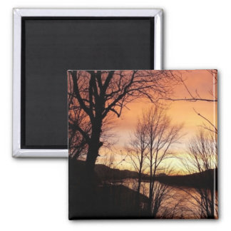 Sunset Through The Trees Square Magnet