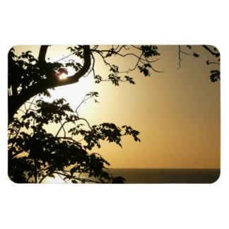 Sunset Through Trees I Tropical Photography Rectangular Photo Magnet