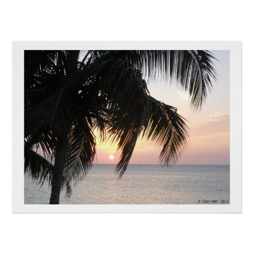 Sunset under a Palm Montego Bay Jamaica Posters