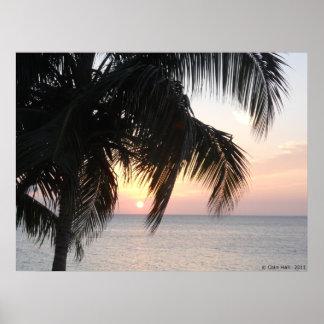 Sunset under a Palm Montegor Bay Jamaica Canvas Pr Poster