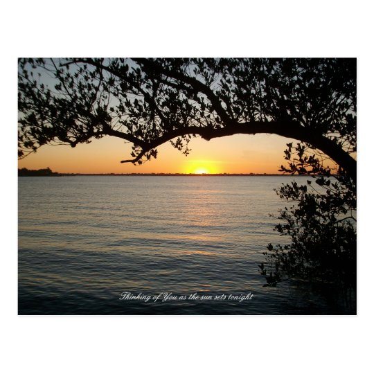 Sunset under tree postcard