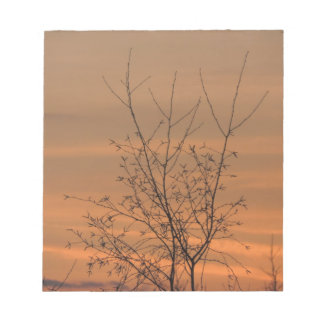 Sunset whit tree branches, colorful sky notepad