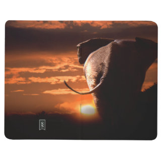 Sunset with Elephant Journal