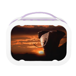 Sunset with Elephant Lunch Box