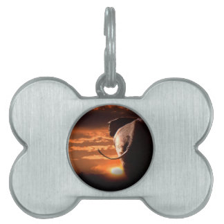 Sunset with Elephant Pet Name Tags
