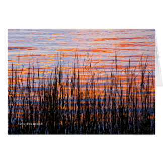 Sunset with Grasses Card