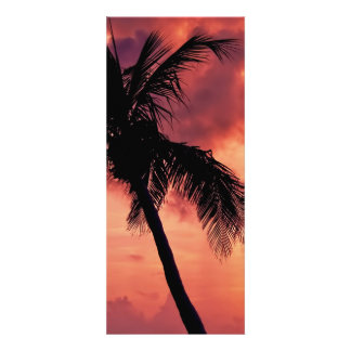 Sunset with Palm Announcement