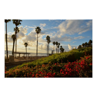 Sunset with Palm trees and Borgenvillia Poster