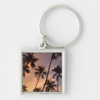 Sunset with Palm Trees, Moorea, French Polynesia 2 Silver-Colored Square Keychain