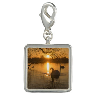 Sunset with Swan Charm