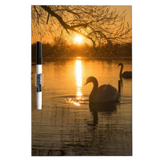 Sunset with Swan Dry Erase Board