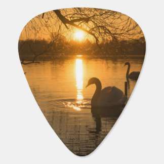 Sunset with Swan Guitar Pick