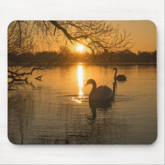 Sunset with Swan Mouse Pad