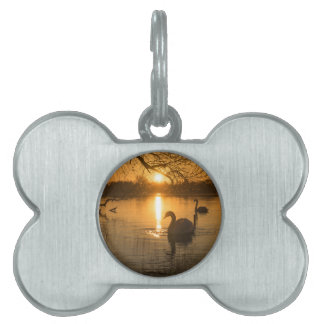 Sunset with Swan Pet ID Tag