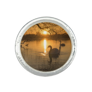 Sunset with Swan Photo Rings