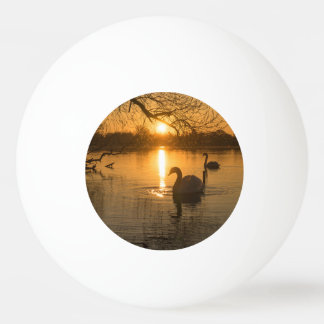 Sunset with Swan Ping Pong Ball