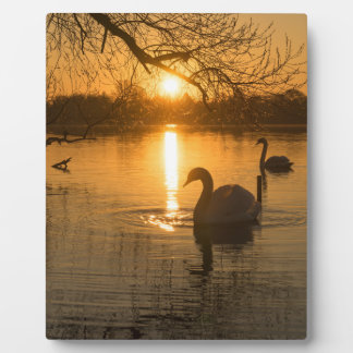 Sunset with Swan Plaque