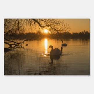 Sunset with Swan Sign
