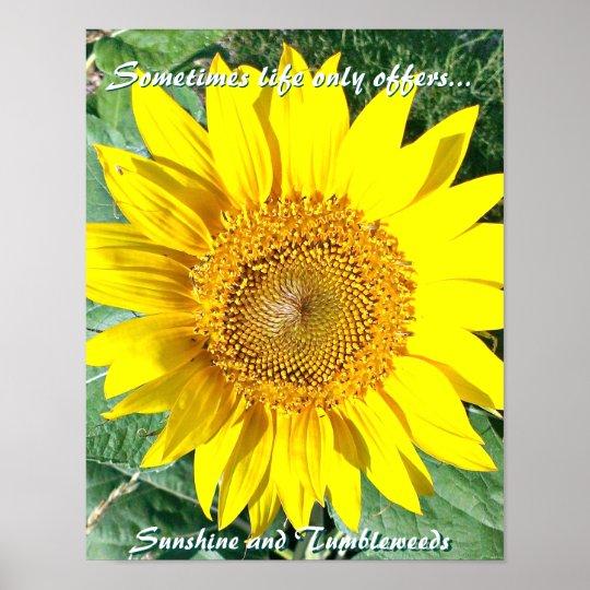 Sunshine and Tumbleweeds - Sunflower Poster