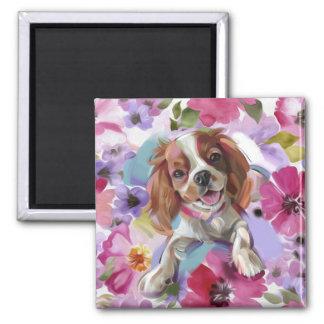 'Sunshine' Blenheim cavalier dog art magnet