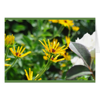 Sunshine Flower Blank Card