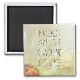 Sunshine & Friendship Magnet