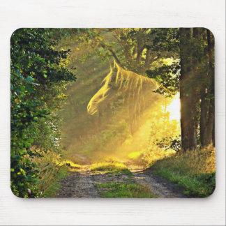 Sunshine horse mouse pad