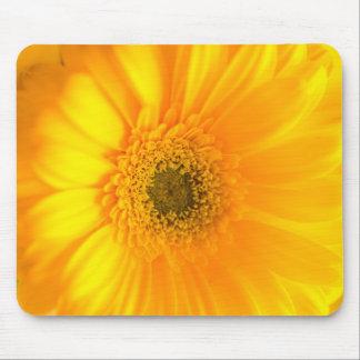 Sunshine Mouse Pad