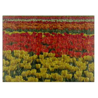 Sunshine Rainbow Tulips Cutting Board