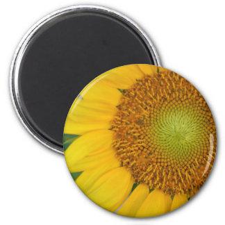 Sunwheel magnet