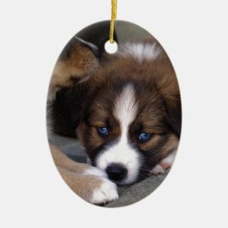 Super Cute Australian Shepherd Puppy Ceramic Ornament