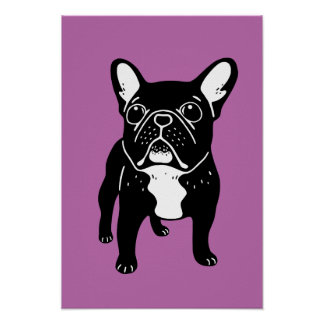 Super cute brindle French Bulldog Puppy Poster