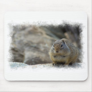 Super Cute Ground Squirrel White Border Mouse Pad