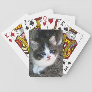 SUPER CUTE Kitten Customizable Playing Cards