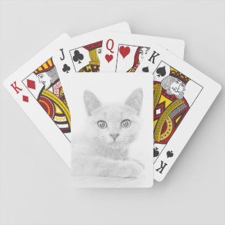 SUPER CUTE Kitten Portrait Photograph Playing Cards