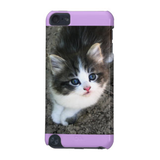SUPER CUTE Stray Kitten iPod Touch (5th Generation) Cover