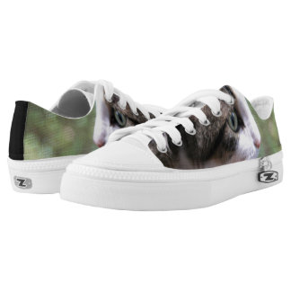 Super Cute Swag Kitty Kitty Low Top Shoes