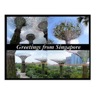 Super Greetings from Singapore! Postcard