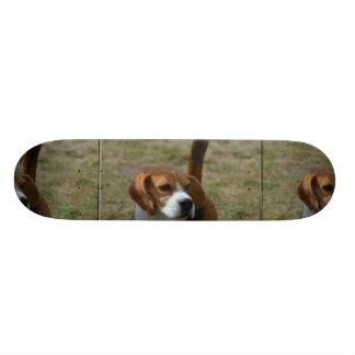 Super Sweet Beagle Custom Skateboard