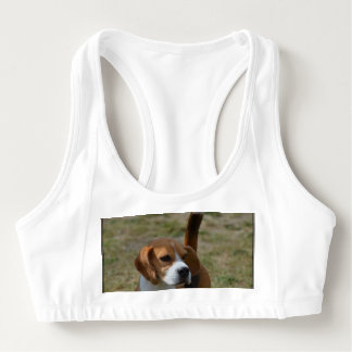 Super Sweet Beagle Sports Bra