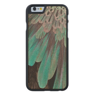 Superb Bird of Paradise feathers Carved® Maple iPhone 6 Slim Case