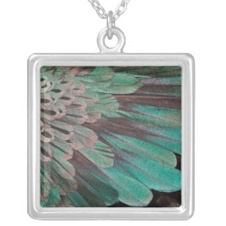 Superb Bird of Paradise feathers Silver Plated Necklace