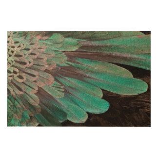 Superb Bird of Paradise feathers Wood Wall Art