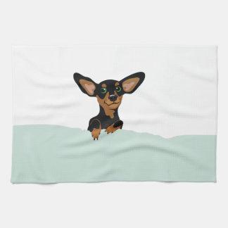 Supercute dachshund puppy under green duvet kitchen towel