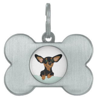 Supercute dachshund puppy with floppy ears collar pet ID tag