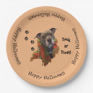 Superhero Halloween Pitbull Paper Plates 9 Inch Paper Plate