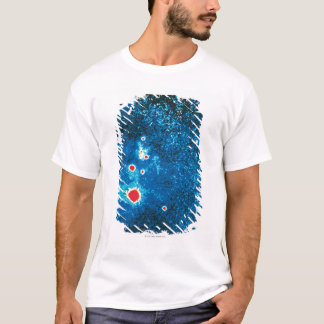 Supernova 1987 T-Shirt