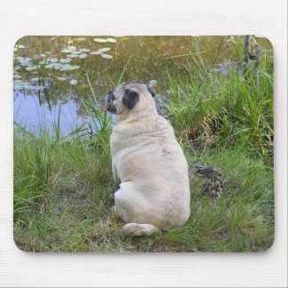 Supervising the Pond Mouse Pad