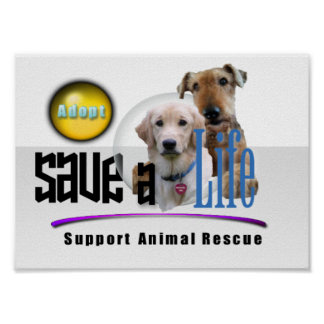 SUPPORT ANIMAL RESCUE - ADOPT! POSTER