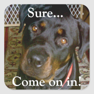 """""""Sure...Come on in"""" Sticker (rottweiler)"""